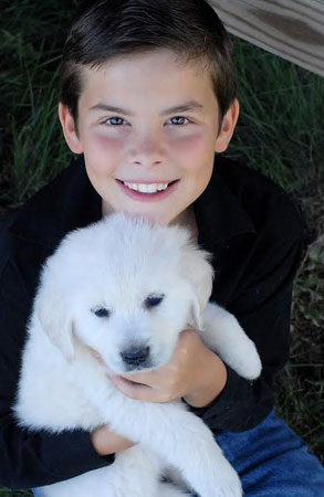 child with English Cream golden retriever puppy